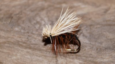 Elk-hair Caddis Svart